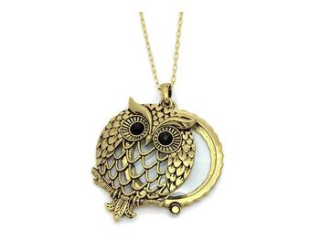 Occasions gift giving goldtone owl magnifying glass pendant necklace goldtone owl magnifying glass pendant necklace aloadofball Choice Image