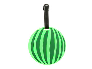 Watermelon ~ Travel Suitcase ID Luggage Tag and Suitcase Label