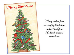 Filled With Dreams Come True ~ 6 Pack Holiday Greeting Cards