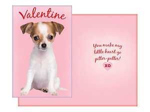 Pitter-Patter ~ Valentine's Day Card
