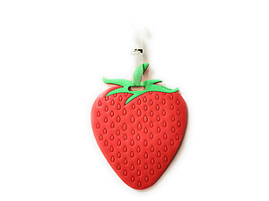 Red Strawberry ~ Travel Suitcase ID Luggage Tag and Suitcase Label